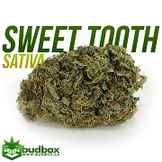 Sweet Tooth Sativa- Small Buds