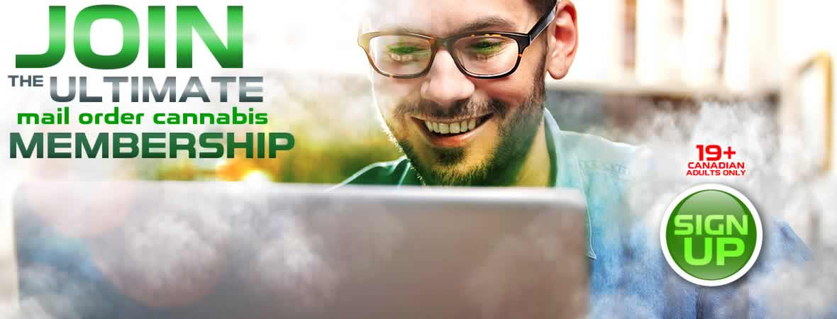 Join BudBox Today