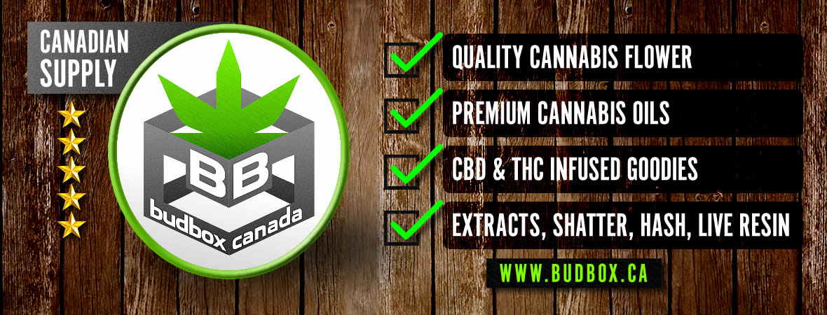 High Quality Always Guaranteed