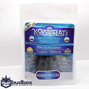 Moonberry Gummy Bar - 250mg CBD