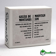 Mountain Jam - Che Genetics Seeds