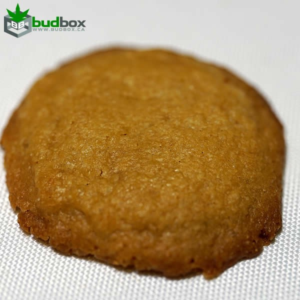 Ginger Cookies | THC Infused 150mg