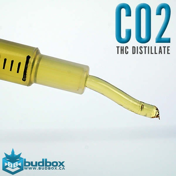 C02 Distillate - THC Extract by Thrive